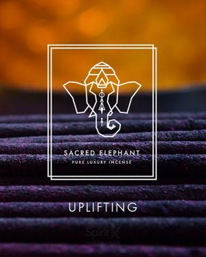 Sacred Elephant Uplifting Incense Set