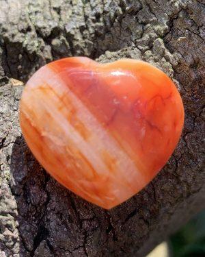Carnelian Heart 014